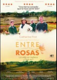 The rose maker (Entre rosas) (2020)